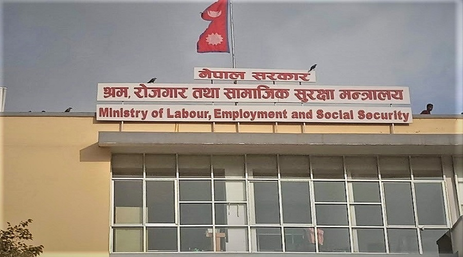Govt decides to start issuing labour permits