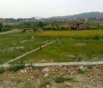 Land plotting escalates even after court restraint