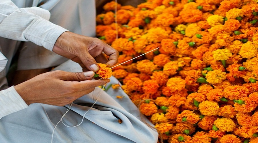 No import of garlands this Tihar