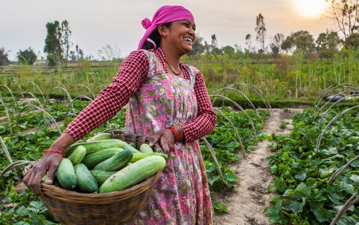 Managing food security in Nepal in light of the COVID-19 crisis